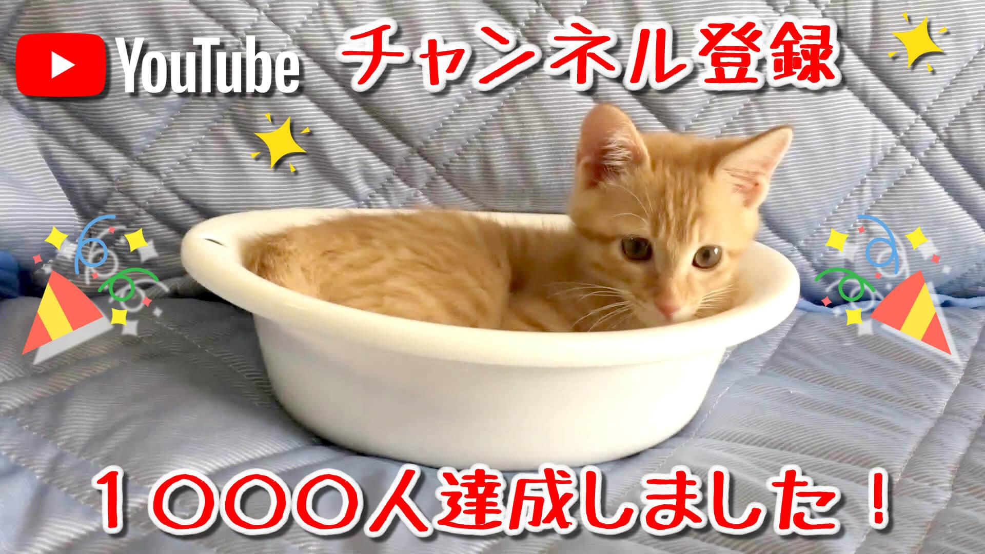YouTube チャンネル登録者1000人達成